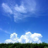 雲が現れた!