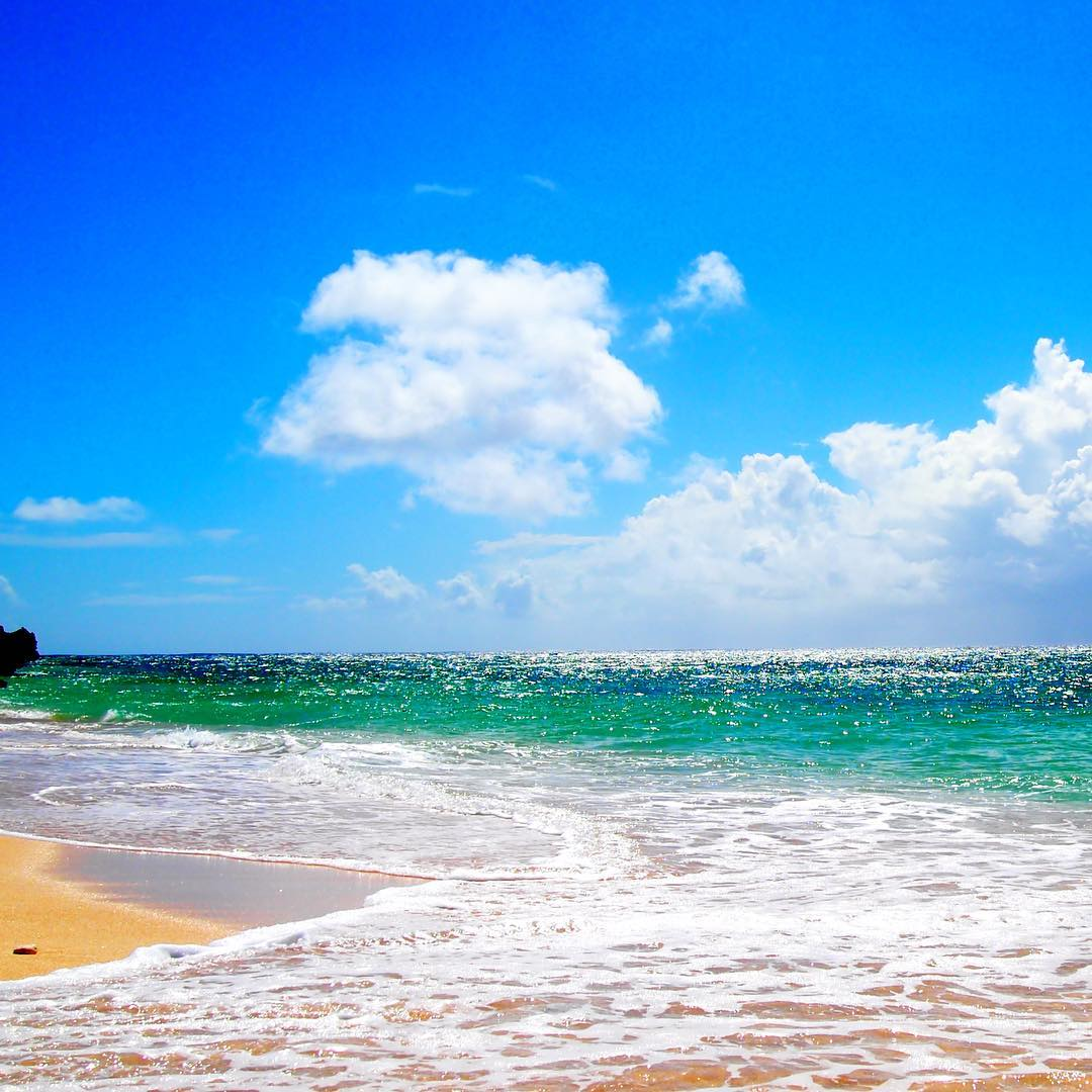 海がキラキラしててきれいでしたよ