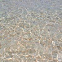 シャイな百合ヶ浜は結局最後まで顔を見せず