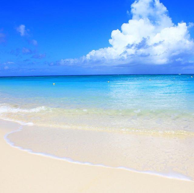 先週のハニブ。の波打ち際。#与論島の海 #兼母海岸#与論 #ocean #beach #ヨロン -Instagram-