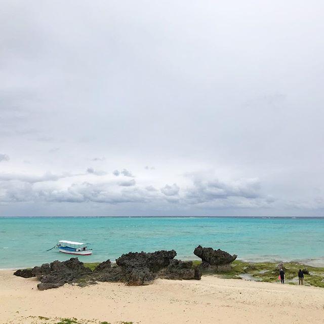 猛烈に寒いけど百合ヶ浜は出てました!が、見えないです。#46n #与論島の海