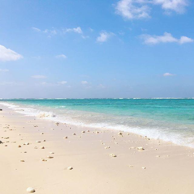 昨日の海。日曜日はいよいよヨロンマラソンです。このまま天気が続いて欲しいですが、それじゃランナーの皆様は大変ですよね。西表島の沖で地震があったようですが、大丈夫でしょうか?与論島は大丈夫です。#46n #与論島の海 #ヨロン