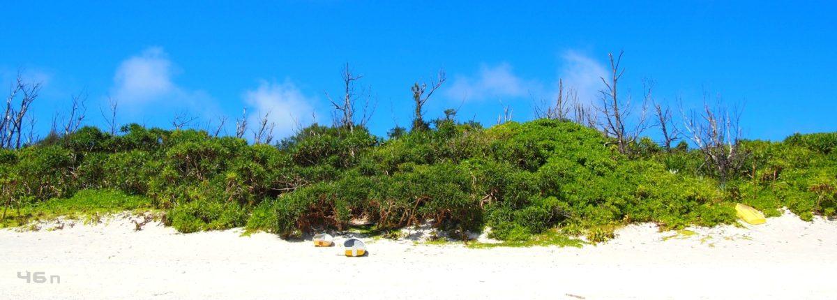 クルパナの砂浜